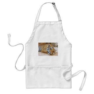 Sova tigern förkläde