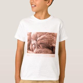 Sovande perser t-shirt