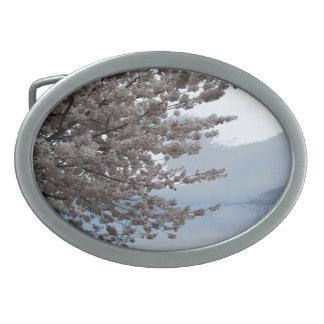 Spänner fast det ovala bältet för trädblommar