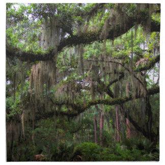 Spansk Moss smyckad levande Oak Tygservett