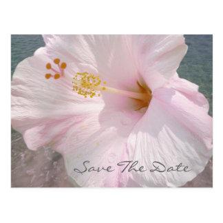 Spara dateravykortet - tropiskt strandbröllop vykort