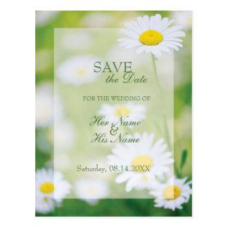 SPARA för sommar för daisydaisyblomma blom- datera Vykort