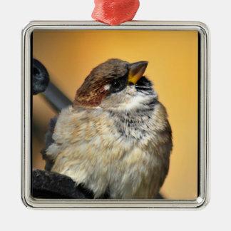 Sparrow Julgransprydnad Metall