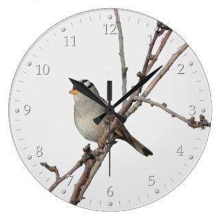 Sparrow på en gren stor klocka