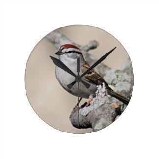 Sparrowfoto Rund Klocka