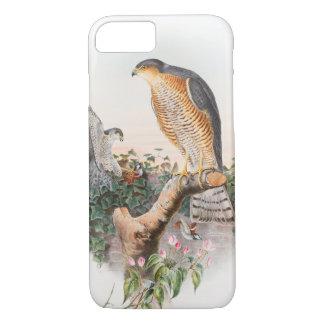 SparrowhökJohn Gould fåglar av Storbritannien