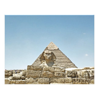 Sphinx Brevhuvud