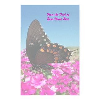 Spicebush Swallowtail fjäril Brevpapper