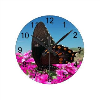 Spicebush Swallowtail fjäril Rund Klocka