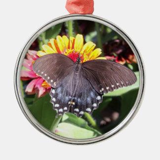 Spicebush Swallowtail Julgransprydnad Metall