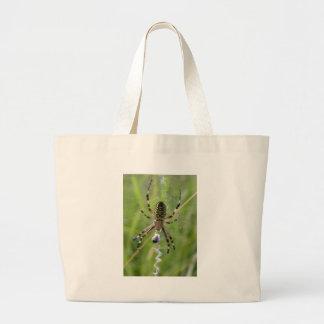 Spindel med rovet kassar