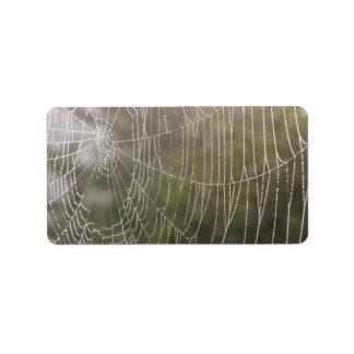 SpindelCobweb Adressetikett
