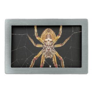 Spindeldesign