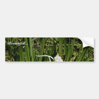 Spindelliljaväxt och blommar bildekal