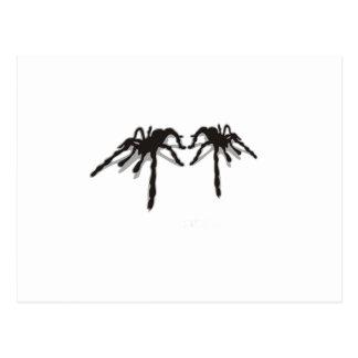 Spindeln 3d vykort