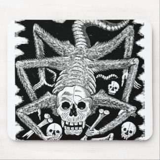 Spindelskelett Musmatta
