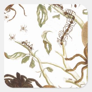 Spindlar, myror och hummingbird på en gren av… fyrkantigt klistermärke