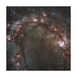 Spiral galax canvastryck