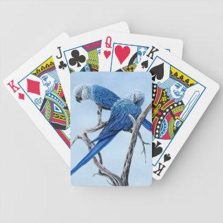 Spix macaw. Blåttpapegojan av filma Rio. Spelkort