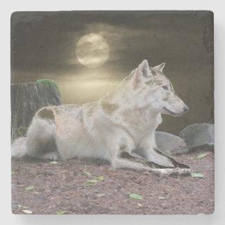 Spökevarg i månsken underlägg sten