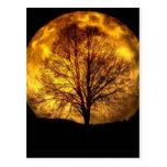 Spöklika gåvor för öde för höst för nattmåneträd
