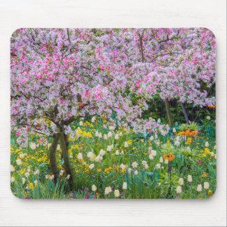Springtime i Claude Monet trädgård Musmatta