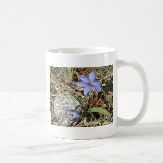 Springtime i de purpurfärgade Irisblommorna för Kaffemugg