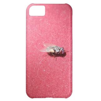Spyflugainsekt på rött iPhone 5C fodral