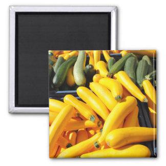 Squash i gult och grönt magnet
