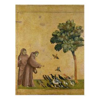St Francis av Assisi som predikar till fåglarna Vykort