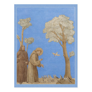 St Francis som predikar till fåglar CC0582 Vykort