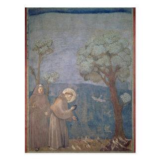 St Francis som predikar till fåglarna, 1297-99 Vykort