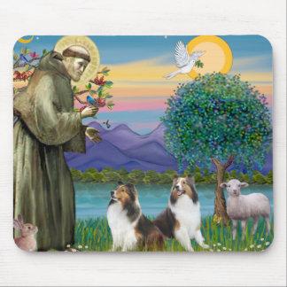 St Francis (W) - två Shelties (D&L) Musmatta