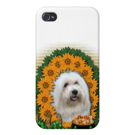 St Patricks - kruka av guld - bomull de Tulear iPhone 4 Cases