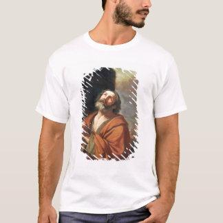 St Peter T-shirts