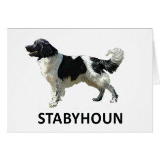 Stabyhoun hälsningkort hälsningskort