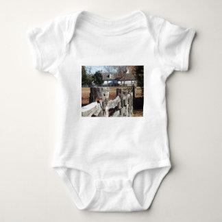 Staket i koloniala Williamsburg T Shirt