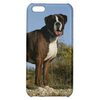 Stance för boxarehundShow iPhone 5C Skal