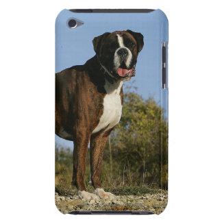 Stance för boxarehundShow iPod Touch Fodral