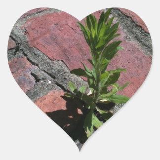 Ståndaktighet - växt som växer till och med hjärtformat klistermärke