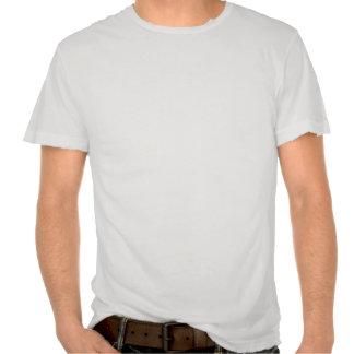 Standart av utslagsplatsen för värld DTS Tshirts
