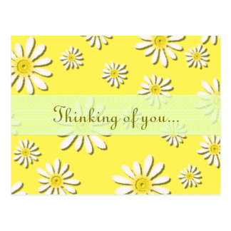 stänk för daisy för vildblomma för U-plocka färg Vykort