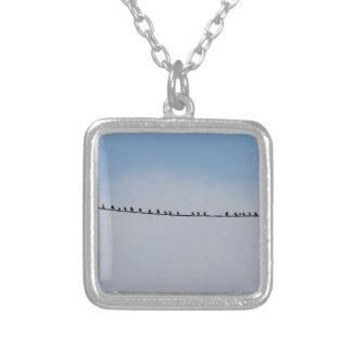 Stare på en binda silverpläterat halsband