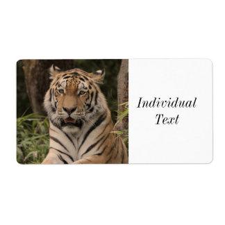 Stark tiger fraktsedel