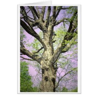 Starkt träd hälsningskort