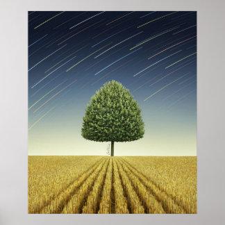 Startrail och träd print