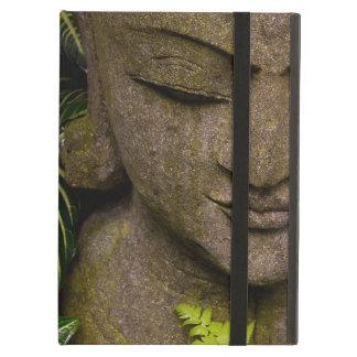 Staty i en trädgårds- information om läge: Chiang  iPad Air Skydd