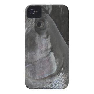 Steelheadforellblackberry fodral iPhone 4 Case-Mate skal