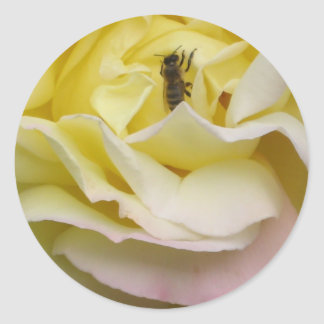 Steg med biet runt klistermärke