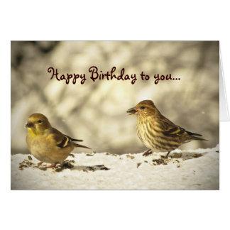 Steglits- och gräsSiskin födelsedag Hälsningskort